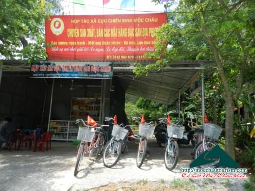 Dịch vụ giải trí tại rừng thông Bản Áng