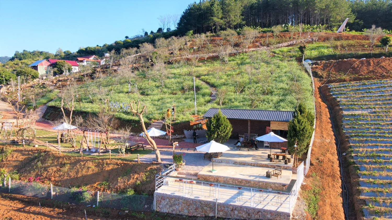 Cafe view Mộc Châu