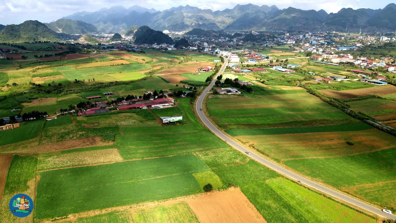 Tháng 12 Mộc Châu cùng khám phá những con đường hoa đẹp nhất