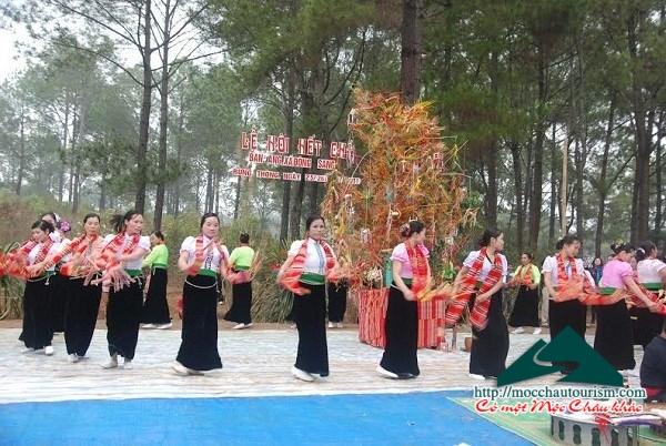 Cam nang du lich Moc Chau, diem nhan vung Tay Bac-hinh-anh-4