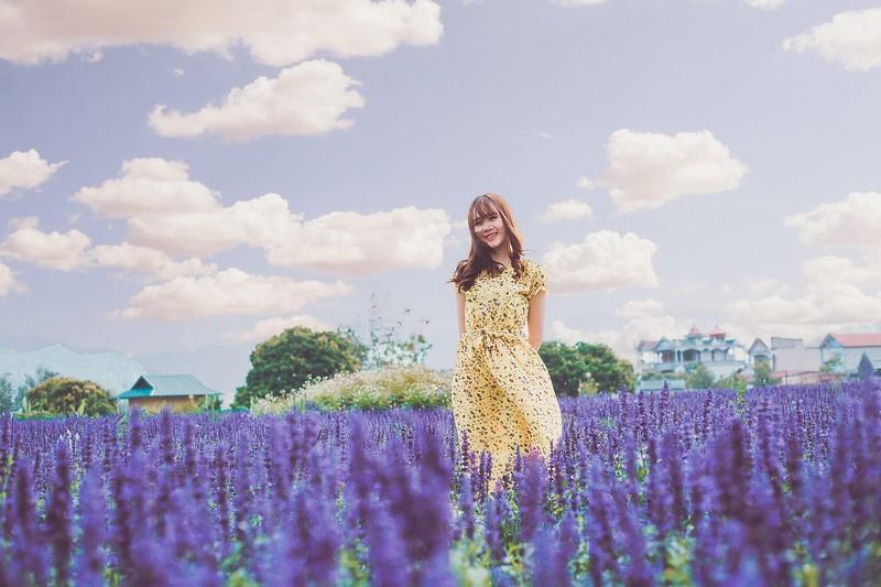 Về Mộc Châu ngay tháng 4 này để ngắm thiên đường hoa tím