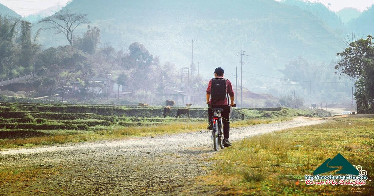 Cho thuê xe đạp tại Mộc Châu