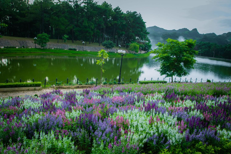 hồ rừng thông bản áng