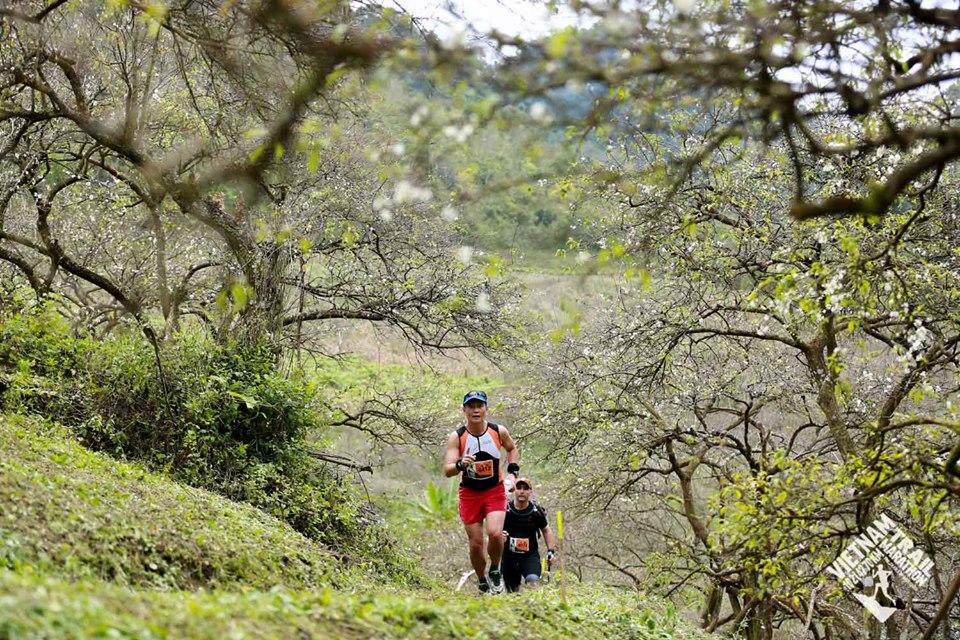 Vietnam Trail Marathon moc chau (1)