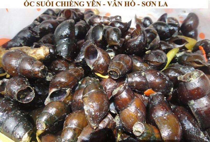 OC SUOI CHIENG YEN (Copy)